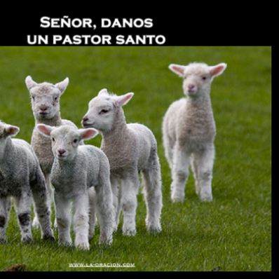 pastor santo