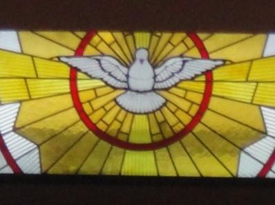 rosario paloma